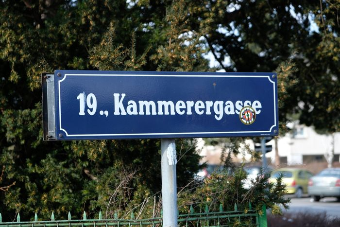 Street named after Paul Kammerer in Vienna.